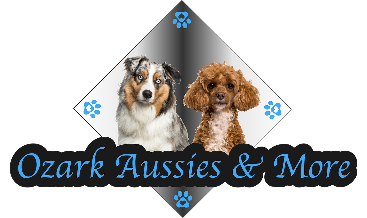 Ozark Aussies and More